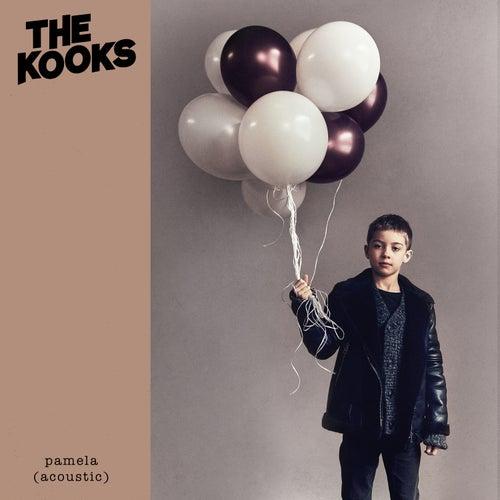 Pamela (Acoustic) by The Kooks