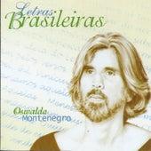 Letras Brasileiras de Oswaldo Montenegro