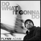 Do What It Gonna Do by Flynn Adam