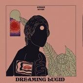 Dreaming Lucid de Ambar Lucid