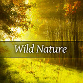 Wild Nature – Fabulous Nature Sounds, New Age Music, Relaxing Sounds of Nature, Relax Yourself de Nature Sounds Artists