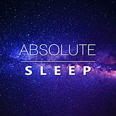Absolute Sleep – Relaxing Music for Deep Sleep, Soothing Sounds of Nature, New Age Ambient for Easily Fall Asleep de Healing Sounds for Deep Sleep and Relaxation