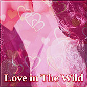 Love in the Wild – New Age Sex Music, Background Music for Lovers, Sensual Sounds for Tantra, Nature Sounds for Better Feelings de Sounds Of Nature