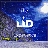 The LID Experience by Lid