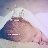 Smart Baby Music by Various Artists