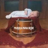 Musica Para Bebe by Various Artists