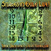 Time Flies When You're Having Fun (Live) de Snakes in Exile