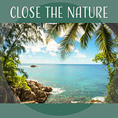 Close the Nature – Ambient Nature Music for Relax Time, Deep Meditation, Easy Sleep von Soothing Sounds