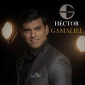 Un Amor para la Historia de Hector Gamaliel