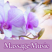 Massage Music – New Age Music for Massage, Hot Stone Massage, Classic Massage, Relaxing Sounds of Nature for Spa, Music to Relieve Stress, Calming Sounds to Relax, Beauty & Spa Music by Pure Spa Massage Music