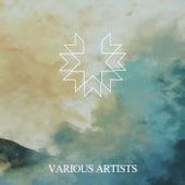 Various Artists von Various Artists