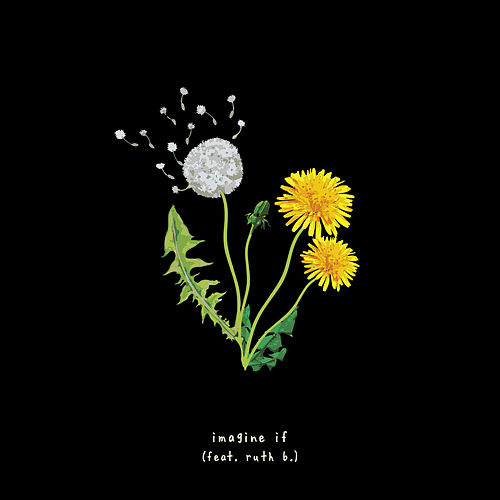 Imagine If (Feat. Ruth B) de Gnash