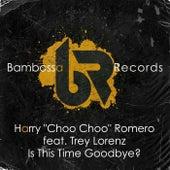 Is This Time Goodbye? by Harry Choo Choo Romero