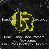 Is This Time Goodbye? (Dub Mix) by Harry Choo Choo Romero