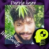Purple Haze by WellSociety