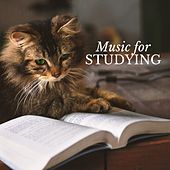 Classical Music for Studying & Brain Power by Various Artists