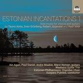 Estonian Incantations 1 by Various Artists