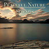 Peaceful Nature Sounds – Relax Yourself, Inner Silince, Spiritual Freedom, Harmony with Nature Sounds de Sounds Of Nature