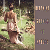 Relaxing Sounds of Nature – Relaxation Music for Spa, Massage,Touch of Nature, Calming Music for Rest de Zen Meditation and Natural White Noise and New Age Deep Massage