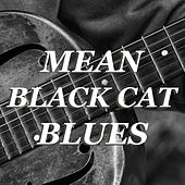 Mean Black Cat Blues by Various Artists