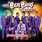 Somos nosotros by Los Bam Band Orquesta