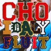 Fluit van CHO