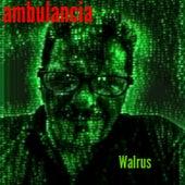 Ambulancia de Walrus