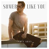 Somebody Like You (Acoustic) by Corey Gray