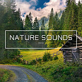 Nature Sounds - EP by Nature Sounds (1)