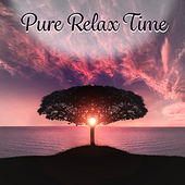 Pure Relax Time – Nature Music for Mindfulness Meditations, Pure Relaxation, Calm Down, Sound Therapy von Soothing Sounds