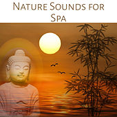 Nature Sounds for Spa: Relaxing Ambiences for Wellness, Massage and Reiki, New Age Music for Yoga, Meditation & Healing by Pure Spa Massage Music