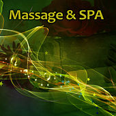 Massage & SPA – Soft Silent Sounds of Nature to Background for Spa Treatments, Massage, Wellness, Beauty Center, Calming Sounds of Nature, Pure Massage, Deep Relax de Nature Sounds Artists