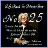 Cantata No. 89, 'Was soll ich aus dir machen, Ephraim'', BWV 89 de Shinji Ishihara
