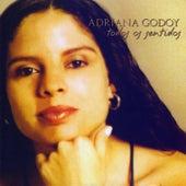 Todos os Sentidos by Adriana Godoy
