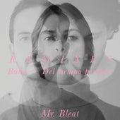 Búho / Del Tiempo Perdido (Remixes) de Mr. Bleat