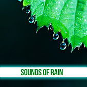 Sounds of Rain – Nature Sounds, Calming Waves, Chill & Relax, Sleep Music von Soothing Sounds