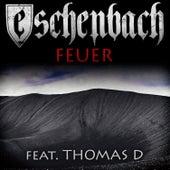 Feuer von Eschenbach