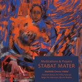 Stabat Mater by Viddal, Bansal, Aaserud, Halvorsen, Brække - Meditations