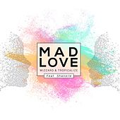 Mad Love by Roy Wood