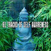 61 Tracks Of Self Awareness von Lullabies for Deep Meditation