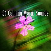 54 Calming Warm Sounds by Classical Study Music (1)
