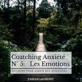 Coatching Anxiété N° 5: Les Emotions (Coaching Pour Guérir Des Angoisses) von Fabian Laumont