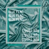 Blue Flag / Fun Things by Jesper Jenset