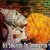 65 Sounds To Immerse de Massage Tribe