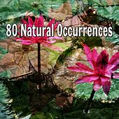 80 Natural Occurrences by Music For Meditation