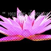 40 Yoga Rites Of Passage von Yoga Music