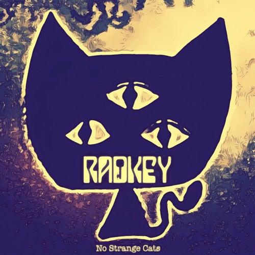 No Strange Cats...P.A.W by Radkey
