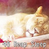 46 Reap Sleep by Ocean Sounds Collection (1)