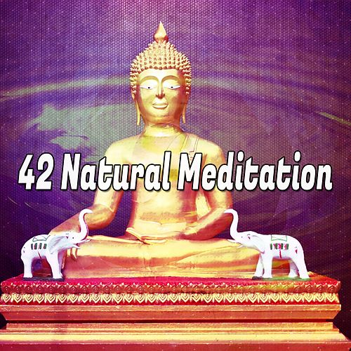 42 Natural Meditation by Asian Traditional Music