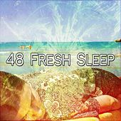 48 Fresh Sleep de White Noise Babies